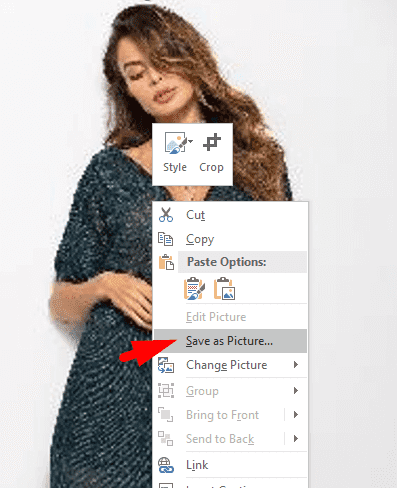 Forget Photoshop - You can edit photos in Microsoft Word 9
